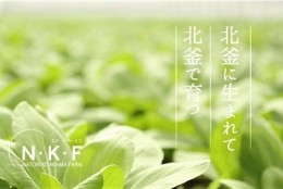 マーケ・新規事業/北釜の野菜を直接消費者へ。販売戦略立案、ペルソナに向けた商品開発プロジェクト!